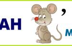Конкурсы по экологии для школьников 7-8-9 класс
