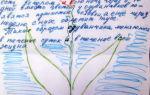 Рассказ про одуванчик, 3-4 класс. окружающий мир