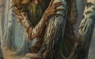 Носов «лесной хозяин» читать