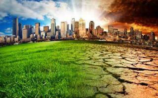 Экологическая сказка для 2 класса. сценарий