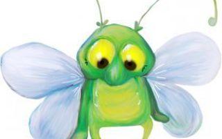Беседа с детьми о насекомых в подготовительной группе
