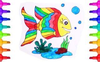 Конспект занятия в группе раннего возраста. наблюдение за рыбкой в аквариуме