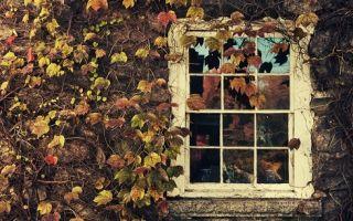Ахматова «песня последней встречи» стихотворение текст