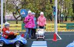 Конспект занятия по пдд в старшей группе детского сада по фгос. тема: машины на нашей улице