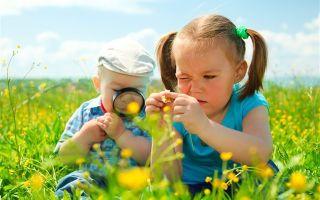 Консультация для родителей в детском саду. экологическое воспитание дошкольников в семье