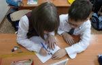 Классный час на день конституции в начальной школе, 3 класс
