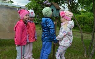 Конспект занятия – путешествия для детей старшей группы доу на тему: птицы