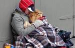 Классный час: «собака — друг человека», 2 класс