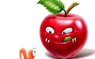 Конспект занятия в старшей группе на осеннюю тему по сказке в. сутеева «яблоко»
