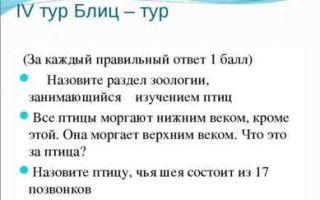 Посвящение первоклассников в школьники. сценарий
