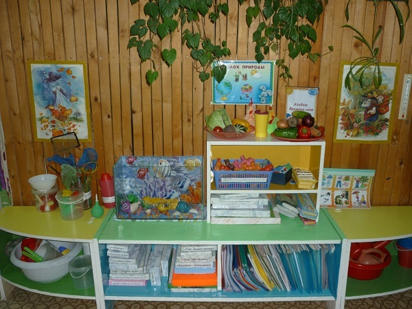 Наблюдения за птицей в клетке в детском саду. Младшая группа