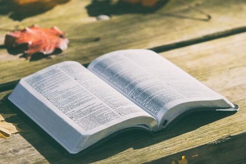 Родительское собрание. Воспитание интереса к чтению у младших школьников 2 класса