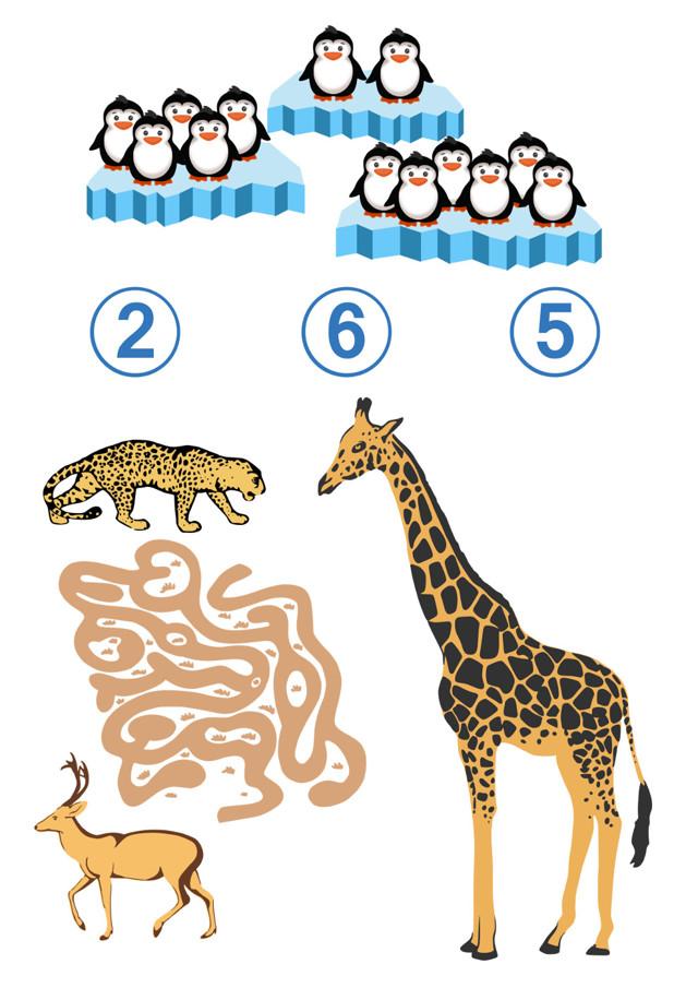 Конспект интегрированного занятия на тему «Животные» в старшей группе
