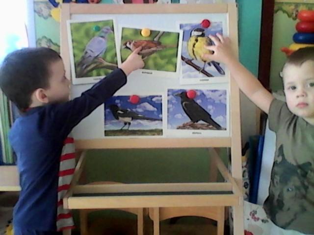 Беседа в детском саду на тему: «Зимующие птицы» в подготовительной группе