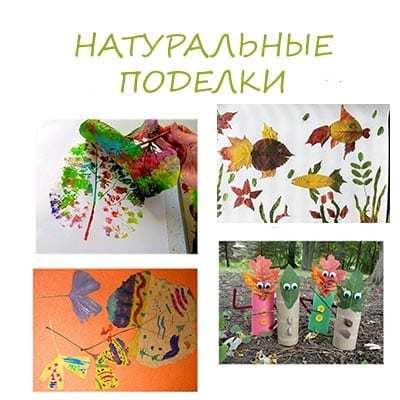 Аппликация из природного материала своими руками для детей