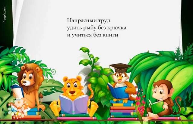 Пословицы и поговорки о книге для детей школьного возраста