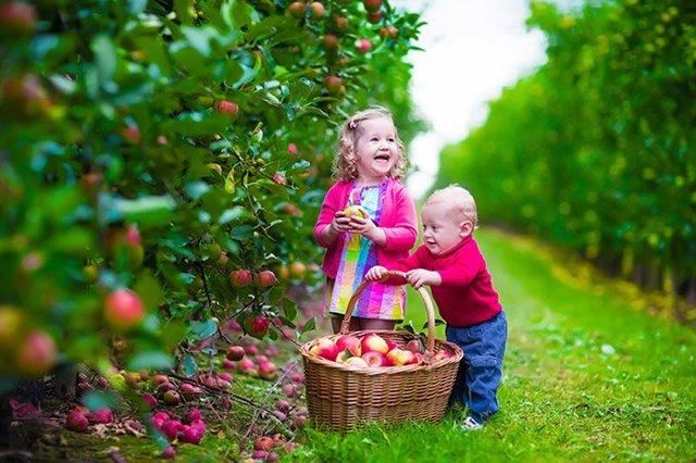 Пословицы про труд и лень для детей