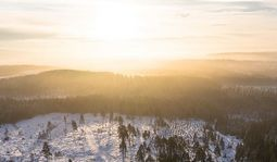 Бунин «Первый снег» текст