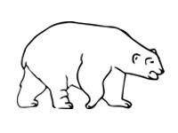 Стихи про диких животных в детский сад