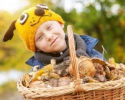 Рассказ про гриб Подосиновик для детей