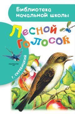 Скребицкий «Лесной голосок» текст распечатать