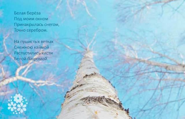 Стихи о природе, 3 класс читать