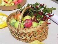 Стихи про урожай для детей 5-6-7 лет