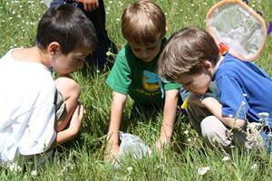 Мероприятия в летнем лагере