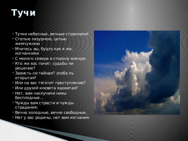 Вяземский «Степь» читать стихотворение