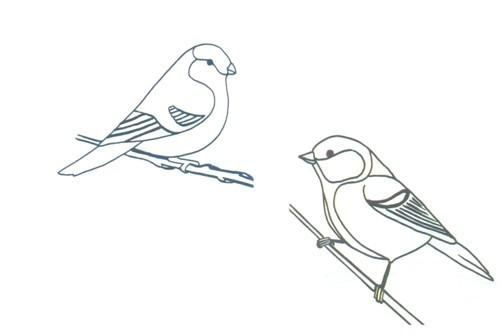 Стихи о зиме для детей дошкольников. Синичка в электричке