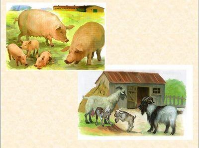 Классный час «Домашние животные», 1 класс