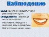 Классный час «Зубы и уход за ними», 2 класс