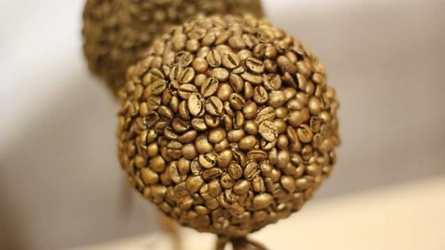 Топиарий из кофейных зерен своими руками