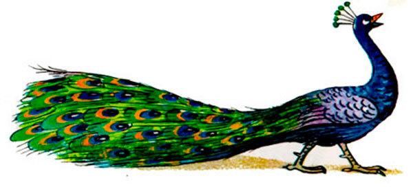 Стихи про птиц для детей 4-5 лет