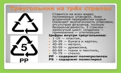Игра по экологии для школьников 8 класса